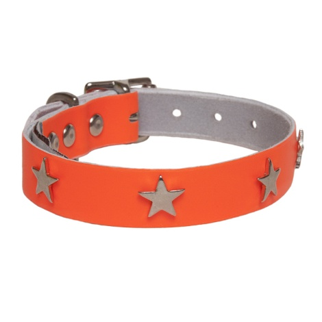 Galaxy Dog Collar - Orange, Nickel Stars