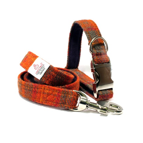 Orange & Olive Collar & Lead Set