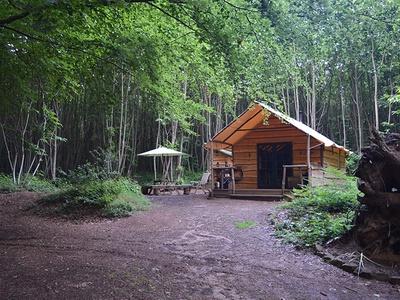 Adhurst Yurts & Cabin, Petersfield