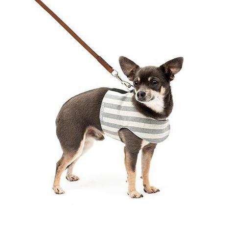 Flint Stripe Brushed Cotton Dog Harness