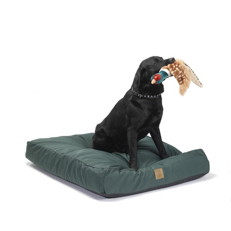 Green Water Resistant Deep Filled Dog Bed 3