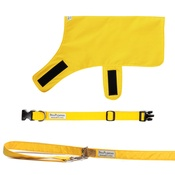 PetsPyjamas - Pawditch Yellow Dog Collar, Lead & Coat Set