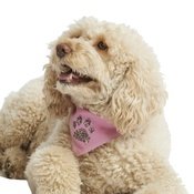 Pet Pooch Boutique - Diamante Paw Dog Bandana - Baby Pink