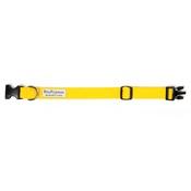 PetsPyjamas - Pawditch Yellow Dog Collar & Lead Set