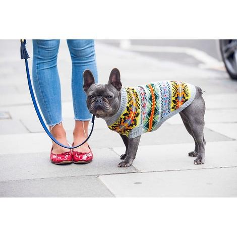 Cortina Cashmere Dog Sweater 2