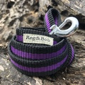 Purple Dog Lead