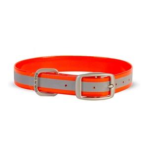 Koa Waterproof Dog Collar – Reflex Orange
