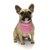Dapper Pets - Pink Paw Indiana Dog Bandana