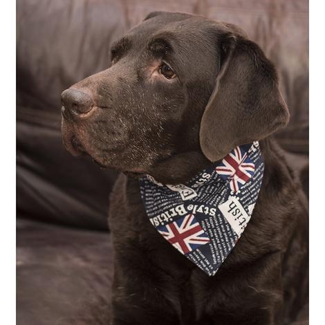 Union Jack Indiana Dog Bandana 4