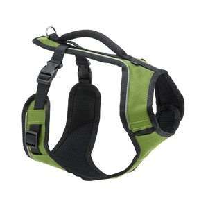 EasySport™ Dog Harness – Apple Green