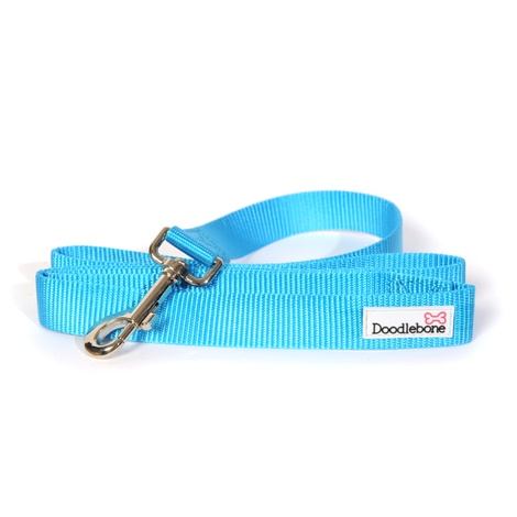 Bold Dog Lead – Cyan