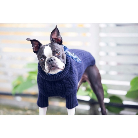 Cable Knit Cashmere Dog Sweater - Midnight 2
