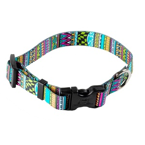 Festival Stripe Dog Collar