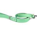 Pale Green Leather Dog Lead 2