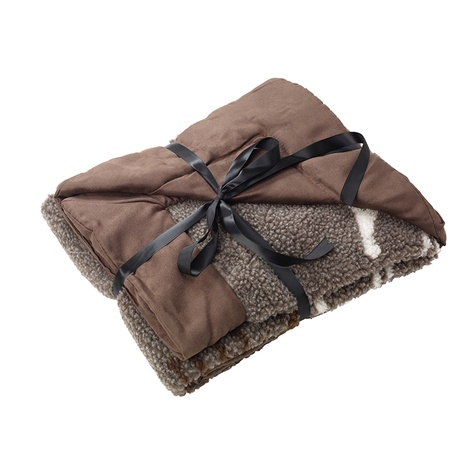 All You Need is Love Dog Blanket – Coco 2