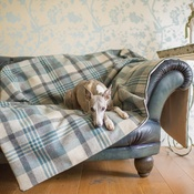 The Lounging Hound - Waterproof Wool Throw - Brunswick