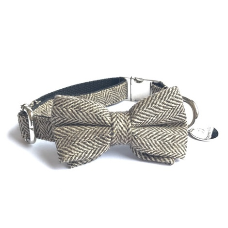 Beaufort Bow Tie Dog Collar