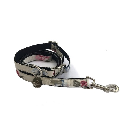 Collar and Lead Set - Disley 2