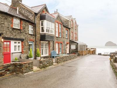 Salty Sea Dog, Cornwall, Trebarwith Strand