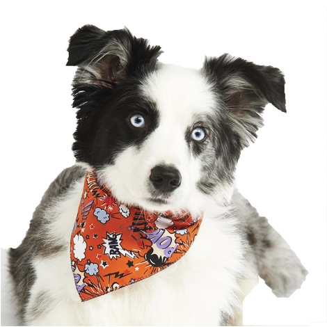 Orange Pow Dog Bandana