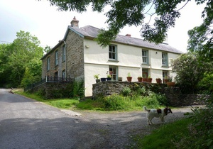 Holistic Retreat For You And Your Dog, Wales 2