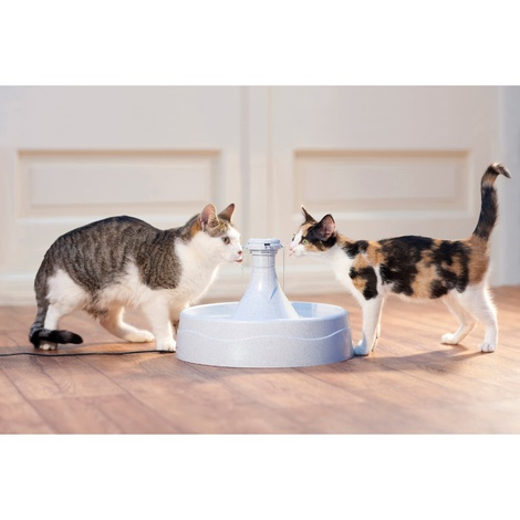 Drinkwell® 360 Plastic Pet Fountain 2