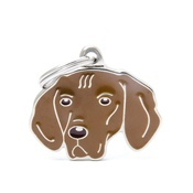 My Family - Vizsla Engraved ID Tag