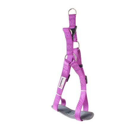 Padded Bold Harness - Purple