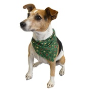 Dapper Pets - Green Christmas Star Slip on Dog Bandana