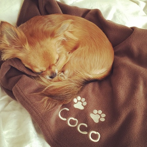Personalised Fleece Blanket - Milk Chocolate 3