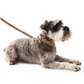 Oatmeal Check Tweed Dog Lead 2