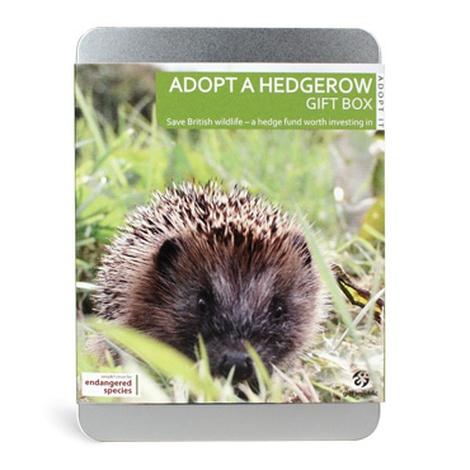 Adopt A Hedgerow