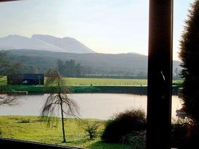 Pinewood, Highland, Gairlochy