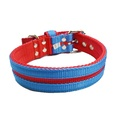 Candy Strip Collar - Red & Sky Blue 2