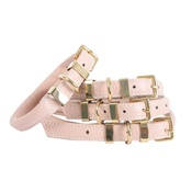 "Teddy Maximus - ""The Rose"" Pink Champagne Dog Collar"