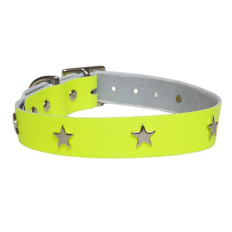 Galaxy Dog Collar - Yellow, Nickel Stars