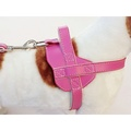 Colour Fusion Leather Harness – Pink 3
