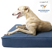 Charley Chau - The GRWE Big Memory Foam Dog Bed - Navy
