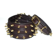 Pear Tannery - Brass Studs Leather Dog Collar - Brown