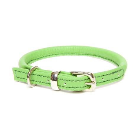 D&H Rolled Leather Collar - Green
