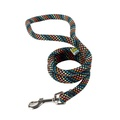 Braided Dog Lead – Rainbow with Black