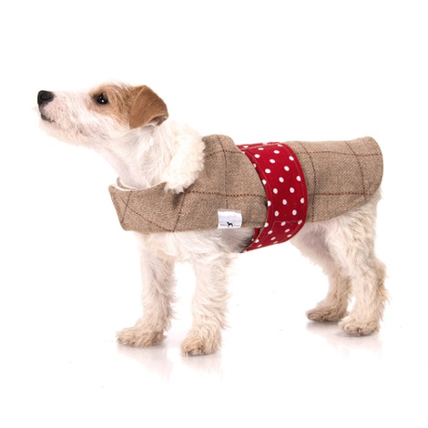 Barnaby Tweed Dog Coat 2