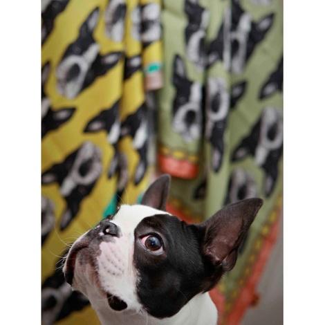 Boston Terrier Print Silk Scarf - Pink & Rich Olive 3