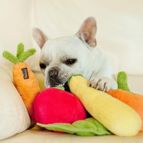 Plush Dog Toy - Peapod 4