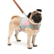 Mutts & Hounds - Macaroon Check Dog Harness