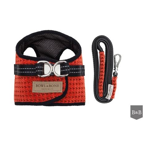 Soho Harness & Lead Set - Orange