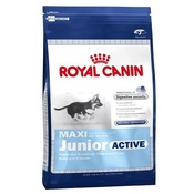 Royal Canin - Maxi Junior Active Dog Food