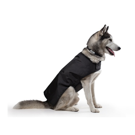 Pawditch Black Dog Coat