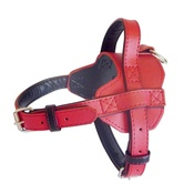 The Paws Pet Supplies - Colour Fusion Leather Harness – Red