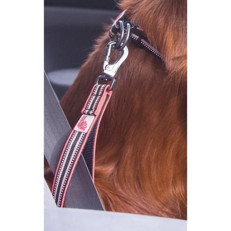 Comfort Traffic Dog Lead – Black 3